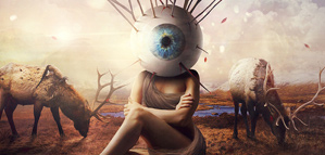 Przemek Nawrocki – Vision
