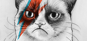 Olechka  – Grumpy Cat as Grumpy Bowie, David NOie