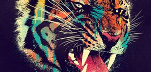 Dzeri29 – Ferocious tiger