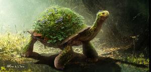 Alfonso De La Torre – Tortoise concept