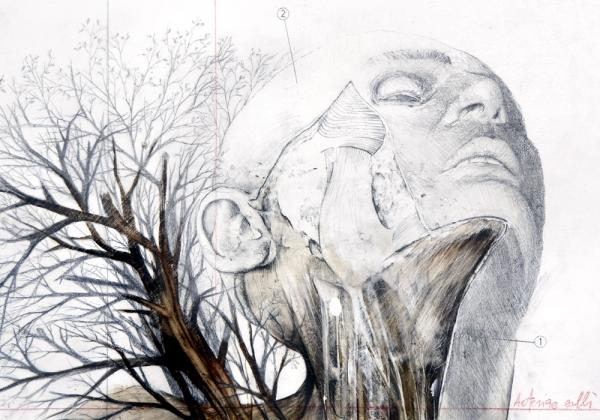 nunzio-paci_6