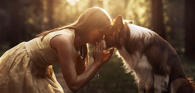 Amazing photos of dogs by Ksenia Raykova