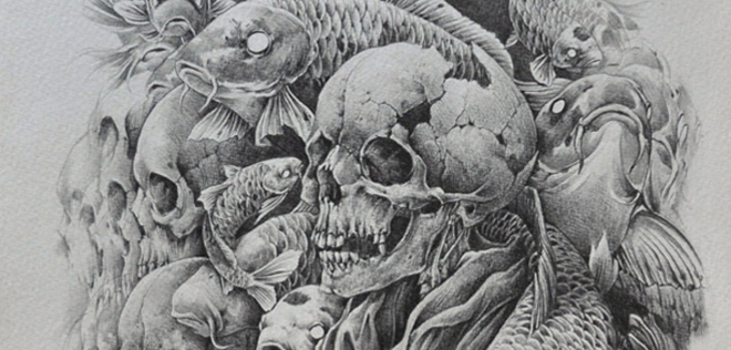 noiaillustration – skulls and fish