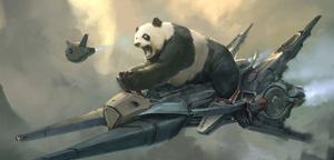 Steve Wang – Panda Rider