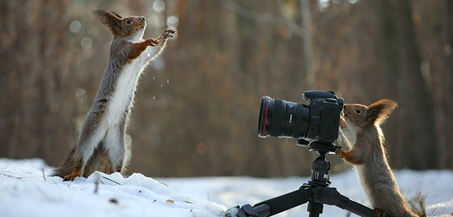 Vadim Trunov – Take a photo me, photographer!