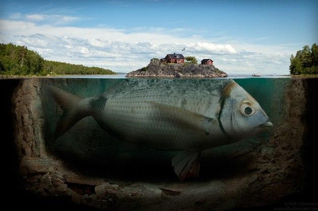 fishy_island_by_alltelleringet