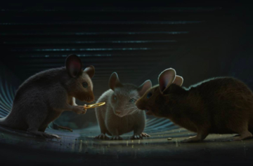 Animated Short Film #273 : MICE, a small story